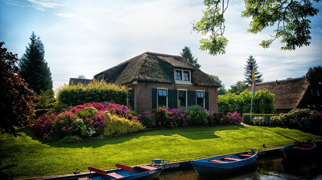 landscaping to increase house value